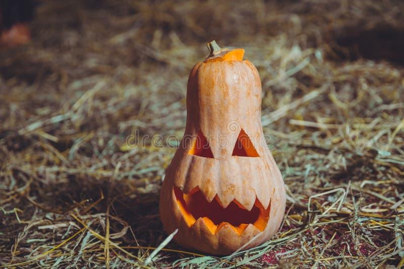 Gesneden Halloween pompoen Halloween-pompoen die op de kwaadste manier grijnzen Griezelige Halloween-Hefboomo Lantaarn Pompoen op stock afbeeldingen