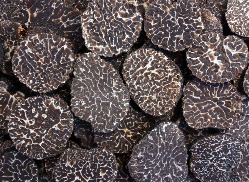 Gesneden zwarte truffes stock foto
