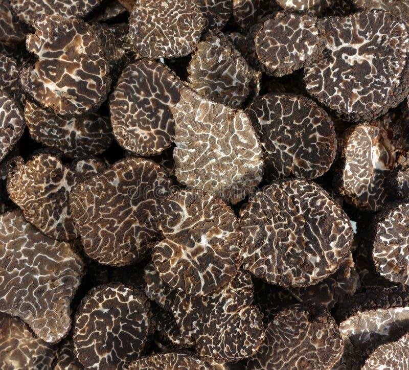 Gesneden zwarte truffes royalty-vrije stock afbeeldingen