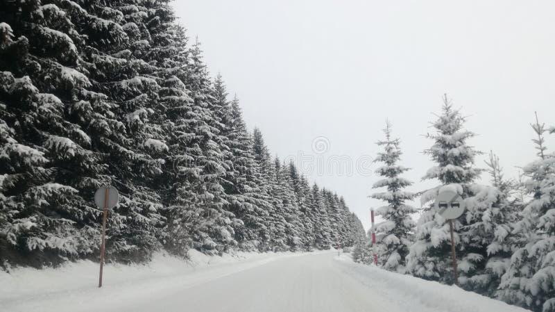 Gesneeuwde weg berg stock fotografie