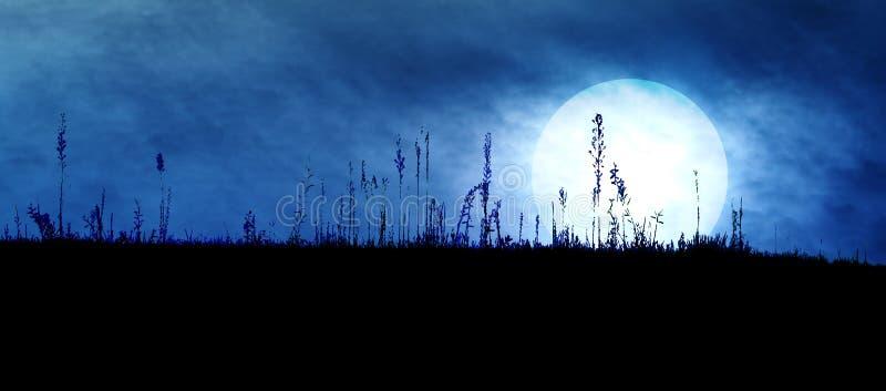 Gespenstische dunkle Landschaft stockfotos