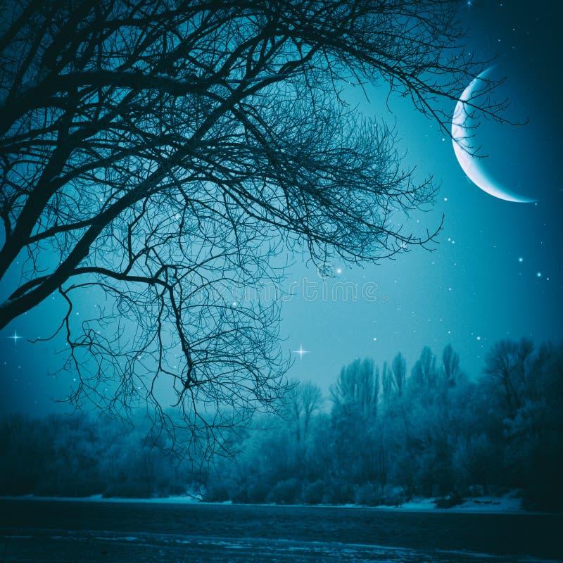 Gespenstische Nacht stockbild