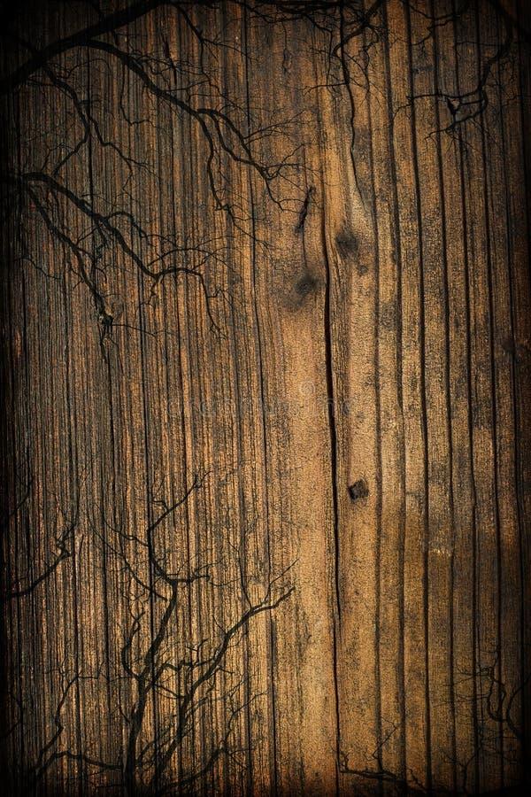 Gespenstischer hölzerner Hintergrund stockbilder