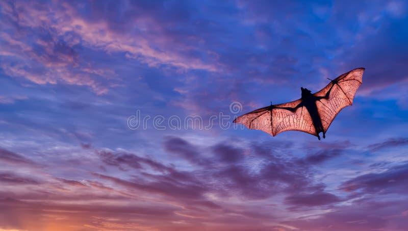 Gespenstischer Halloween-Hintergrund mit Flughund lizenzfreies stockbild