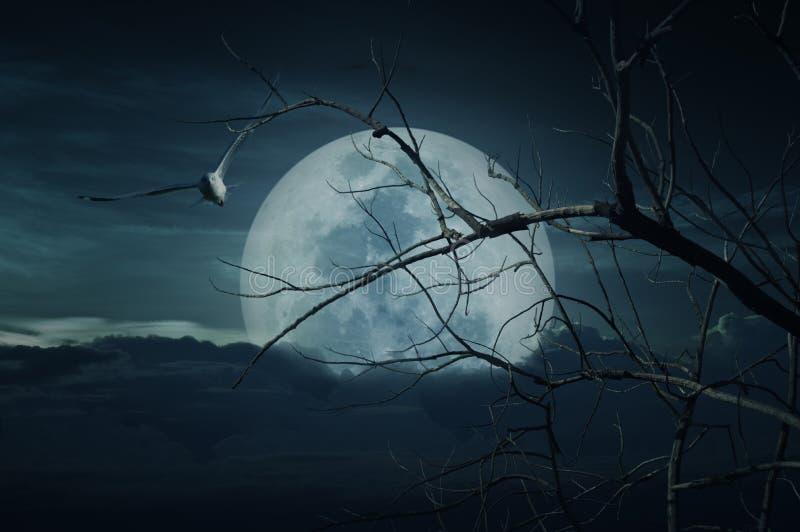 Gespenstischer Wald mit Vollmond, tote Bäume, Halloween-Hintergrund lizenzfreie abbildung