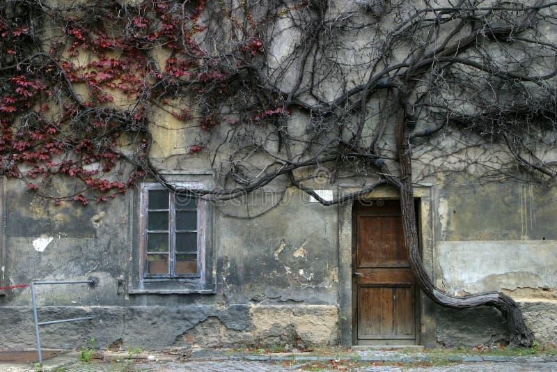Gespenstisches Haus lizenzfreie stockbilder