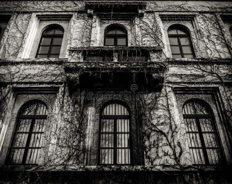 Gespenstisches Haus mit toten Reben lizenzfreie stockfotos