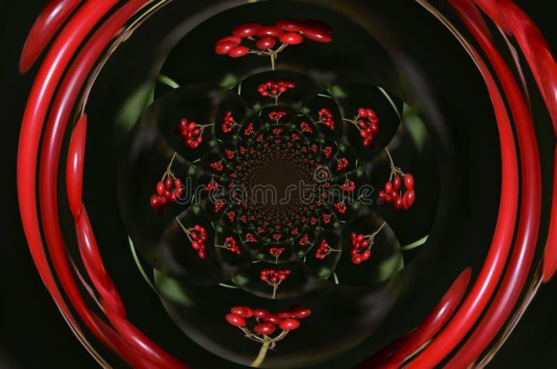Gespiegelt Rote de Beeren imagem de stock