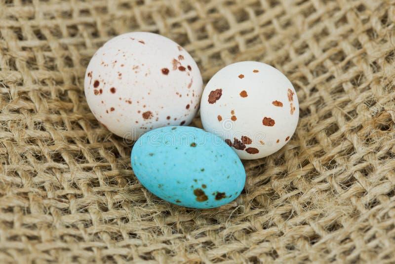 Gespikkelde eieren op de doek van de jutejute stock foto