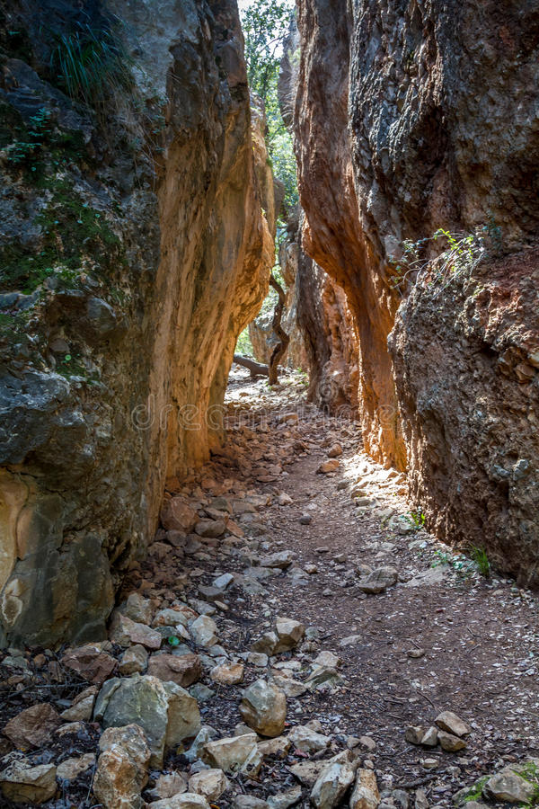 Gespleten in de berg in Israël stock foto