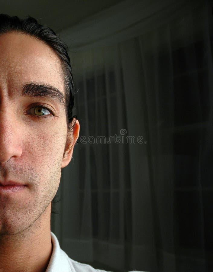 Download Gespleten portret stock afbeelding. Afbeelding bestaande uit zakenman - 32359