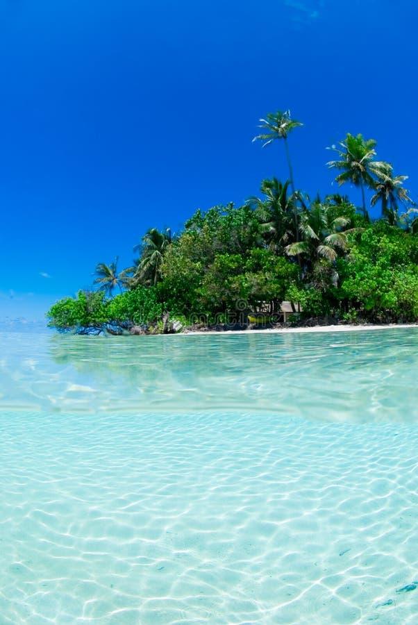 Gespleten schot van tropisch eiland royalty-vrije stock afbeelding