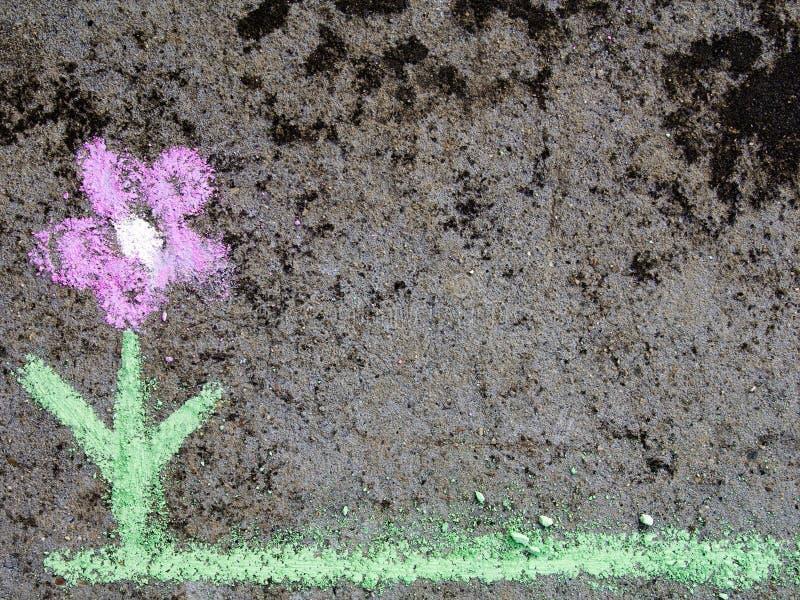 Gesso che attinge asfalto: bello fiore fotografia stock