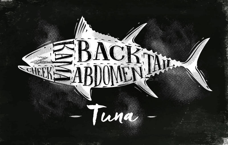 Gesso di schema di taglio del tonno royalty illustrazione gratis