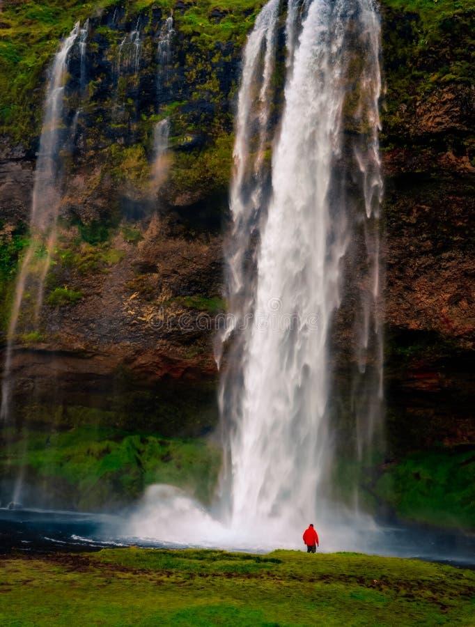 Gestalten Sie Ansicht des schönen Wasserfalls und der Person in der roten Jacke, Island landschaftlich stockbilder