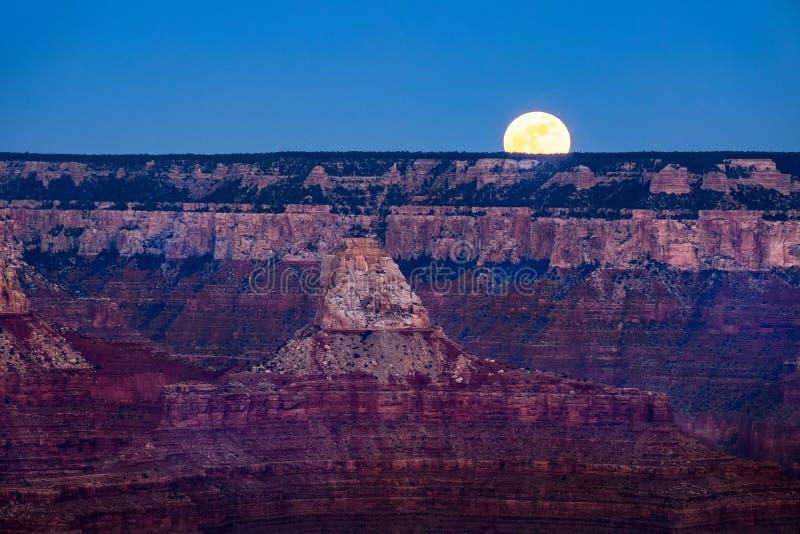Gestalten Sie Ansicht von Grand Canyon mit steigendem Mond, Arizona landschaftlich lizenzfreie stockfotos