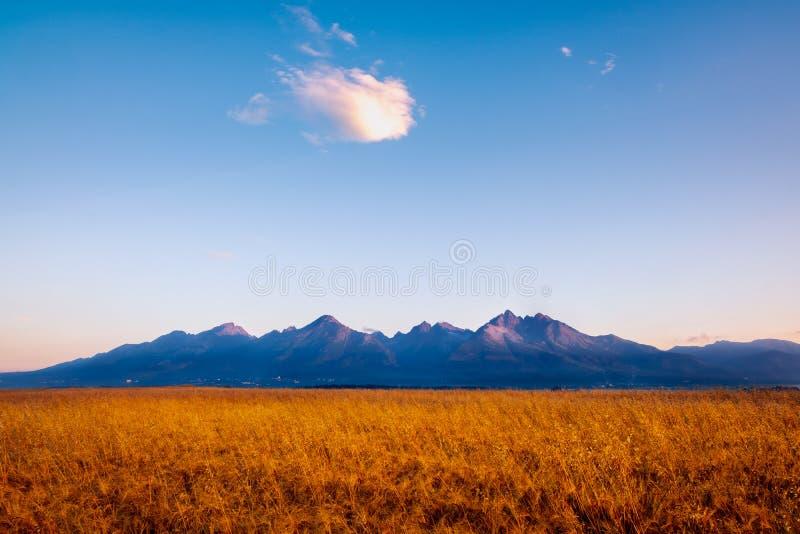 Gestalten Sie Ansicht von hohen Tatras-Bergen bei Sonnenaufgang, Slowakei landschaftlich lizenzfreies stockbild
