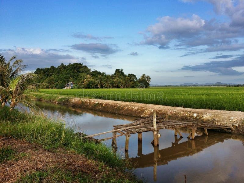 Gestalten Sie Ansicht von Reisfeldern, von Dorf, von Fluss, von Brücke und von drastischem blauem Himmel landschaftlich stockfotografie
