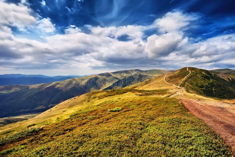Gestalten Sie Berge und Feld des grünen frischen Grases unter blauer SK landschaftlich lizenzfreies stockbild