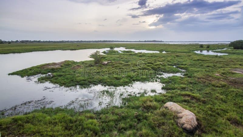 Gestalten Sie, Lagune von Arugam-Bucht, Sri Lanka landschaftlich lizenzfreie stockbilder