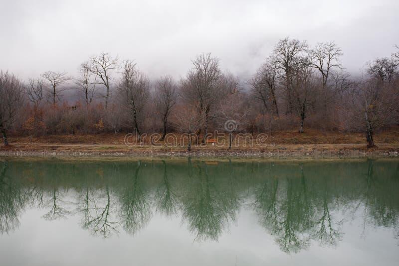 Gestalten Sie mit nebelhaftem Morgennebel in Forest Lake oder schönem Waldsee morgens zur Winterzeit landschaftlich Aserbaidschan stockfotos