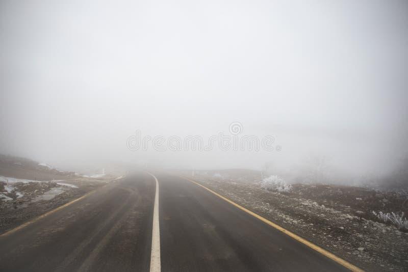 Gestalten Sie mit schönem Nebel im Wald auf Hügel landschaftlich oder schleppen Sie durch einen mysteriösen Winterwald mit Herbst stockbild