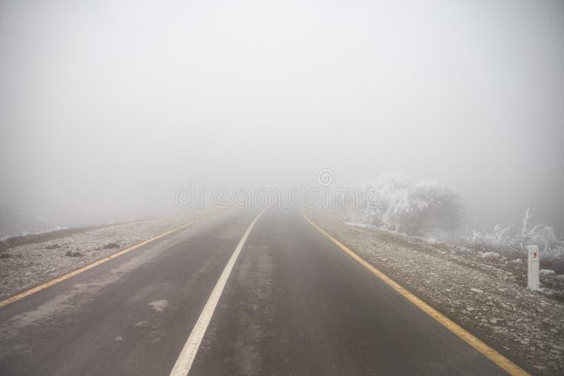 Gestalten Sie mit sch?nem Nebel im Wald auf H?gel landschaftlich oder schleppen Sie durch einen mysteri?sen Winterwald mit Herbst stockfoto