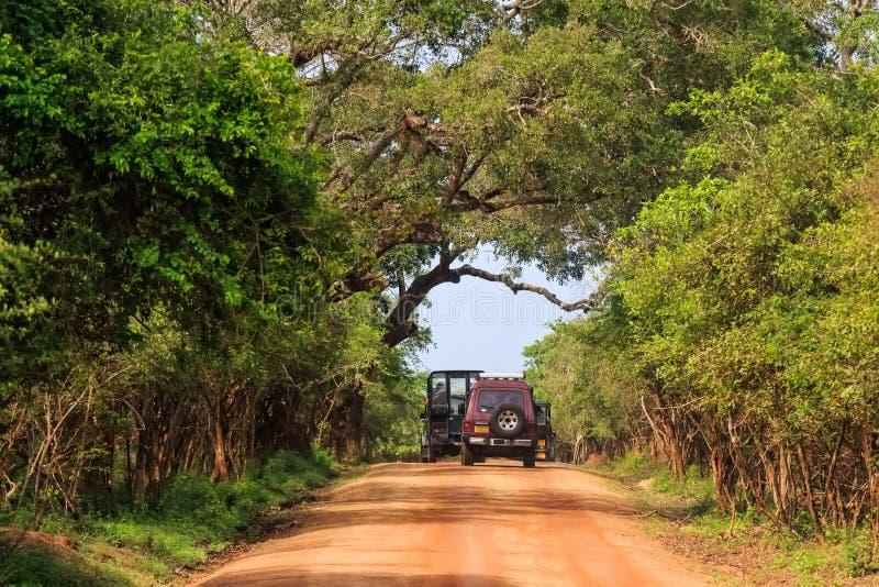 Gestalten Sie mit Straße und SUVs in Nationalpark Yala landschaftlich lizenzfreie stockfotografie