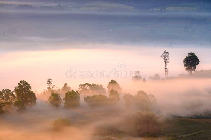 Gestalten Sie Nebel im Morgensonnenaufgang bei Khao Takhian Ngo View Point landschaftlich stockfotografie