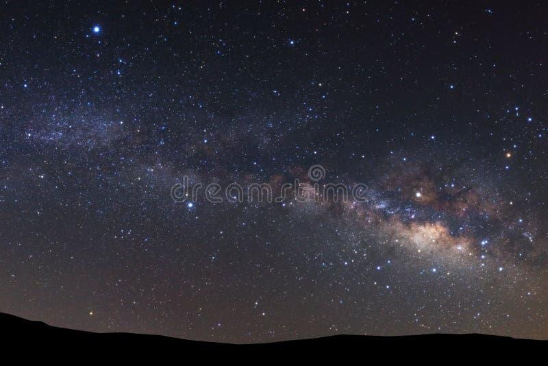 Gestalten Sie Schattenbild des Baums mit Milchstraßegalaxie und Raum dus landschaftlich lizenzfreie stockfotografie