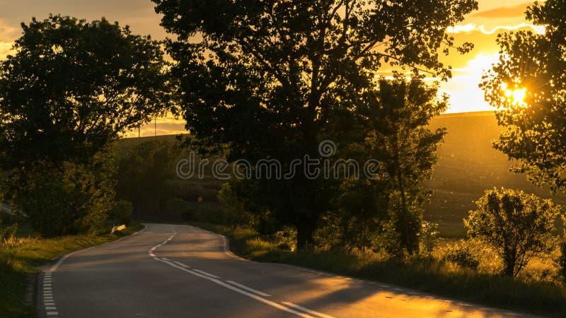 Gestalten Sie Schuss mit den Goldsonnenstrahlen landschaftlich, die eine szenische Straße erhellen lizenzfreie stockfotografie
