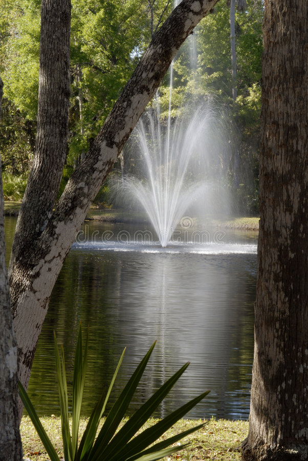 Gestalteter Brunnen lizenzfreies stockbild