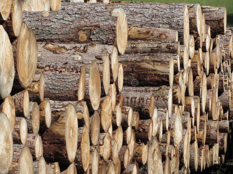 Gestapelde brandhoutstapel Woodpile van ronde logboeken Gehakte houten boomstammen royalty-vrije stock foto