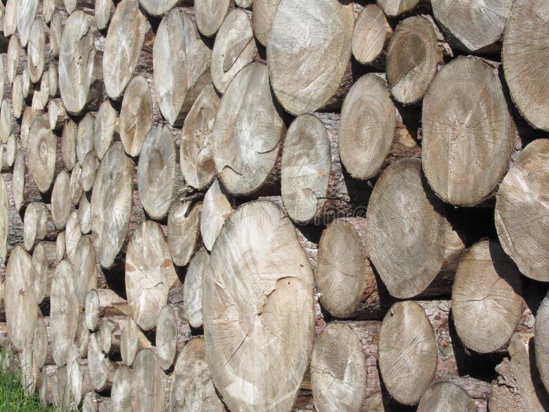 Gestapelde brandhoutstapel Woodpile van ronde logboeken Gehakte houten boomstammen royalty-vrije stock fotografie