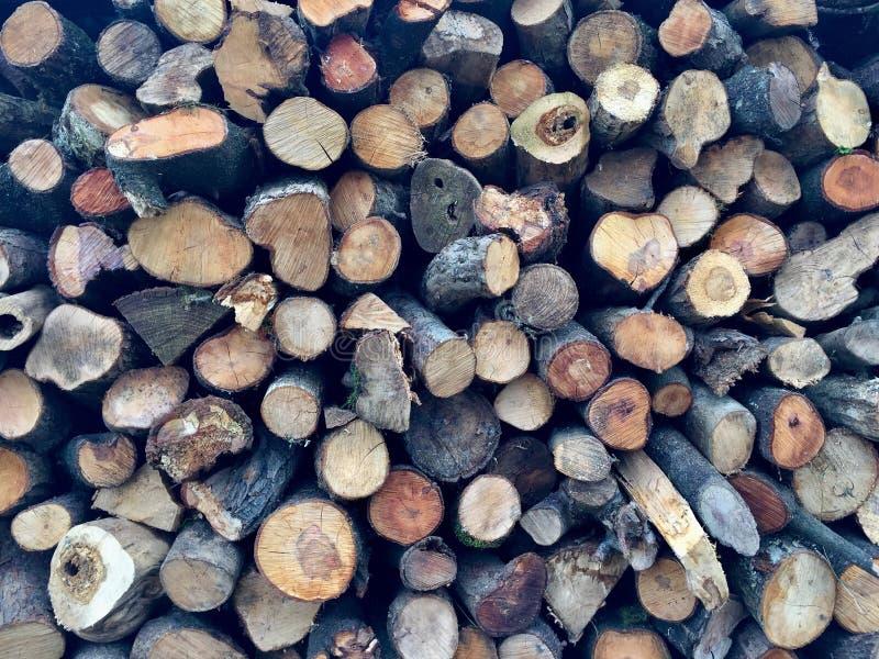 Gestapelde gekruide houten logboeklogboeken stock foto