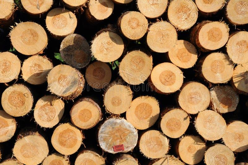 Gestapelde houtlogboeken stock foto's