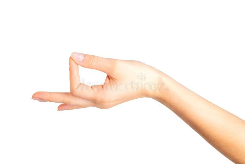 Geste de mudra d'apparence de main de femme ou tenir quelque chose photographie stock libre de droits