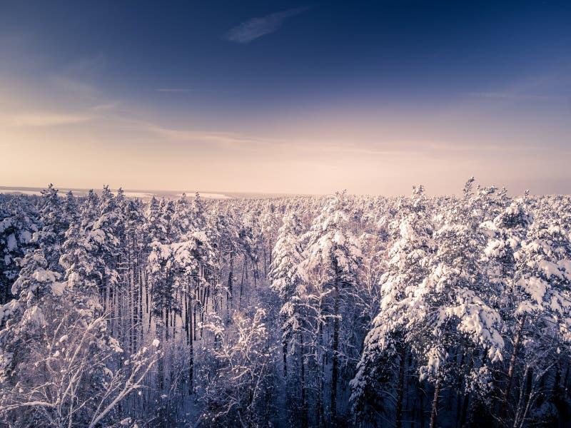 gestemd Satellietbeeld in de winterbos in sneeuw na sneeuwval Meren en hemel met wolken op achtergrond stock foto's