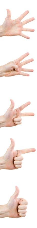gesthand arkivfoton