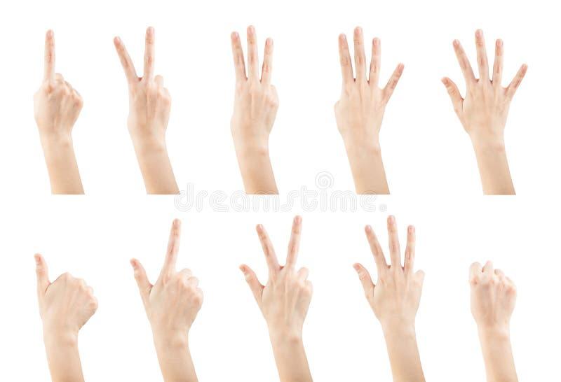 Gesti di mani femminili stabiliti facendo i numeri immagine stock libera da diritti