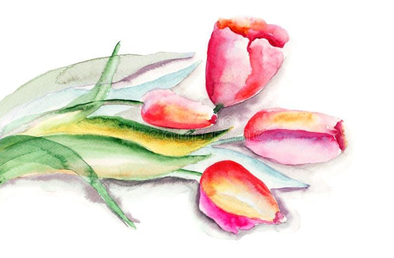Gestileerde De Bloemenillustratie Van Tulpen Stock Foto's