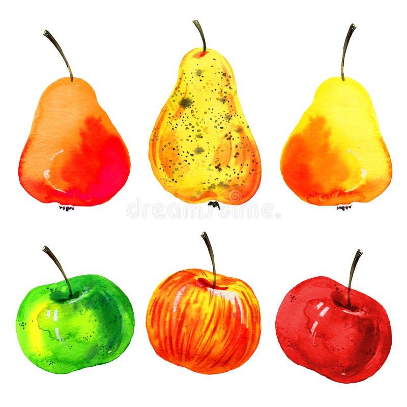 Gestileerde hand getrokken die waterverfillustratie met appelen en peren wordt geplaatst royalty-vrije illustratie