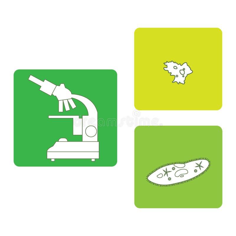 Gestileerde pictogrammen van microscoop, amoebe, met haartjes bedekt-pantoffel Laborator stock illustratie