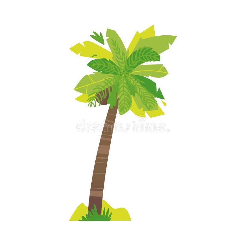 Gestileerde vlakke de kokosnotenpalm van het stijlbeeldverhaal vector illustratie