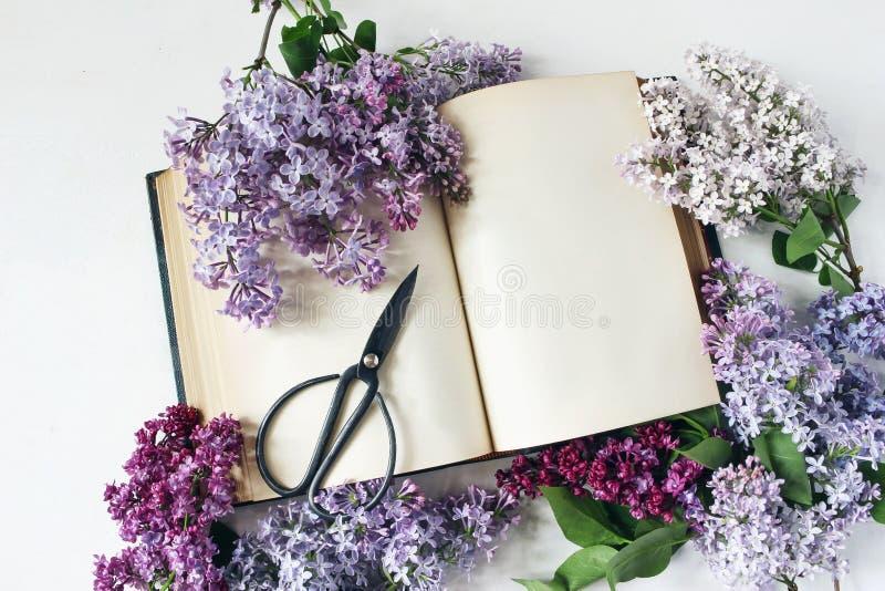 Gestileerde voorraadfoto De lente vrouwelijke scène, bloemensamenstelling Decoratief kader van mooie purpere en witte sering stock foto