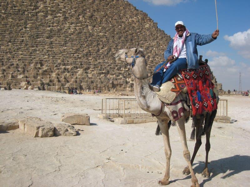 Gestionnaire de chameau aux piramids de Gizeh photo stock