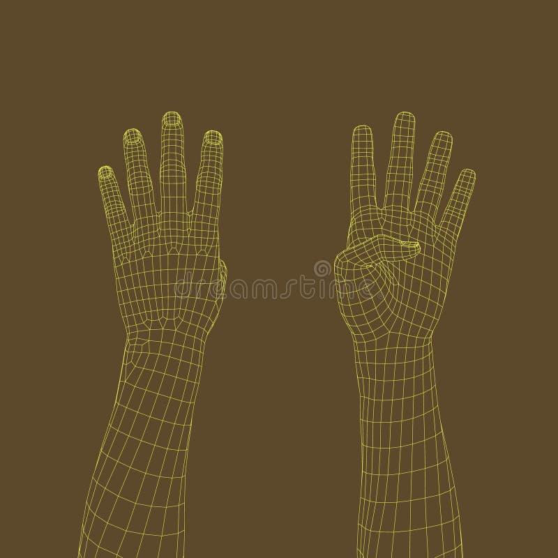Gesto de mão Dedos que mostram o número quatro Illu do wireframe do vetor ilustração royalty free