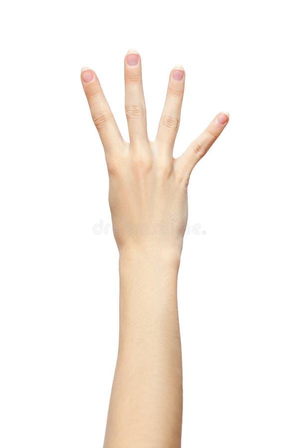Gesto de mano de cuatro fingeres aislado en el fondo blanco fotografía de archivo