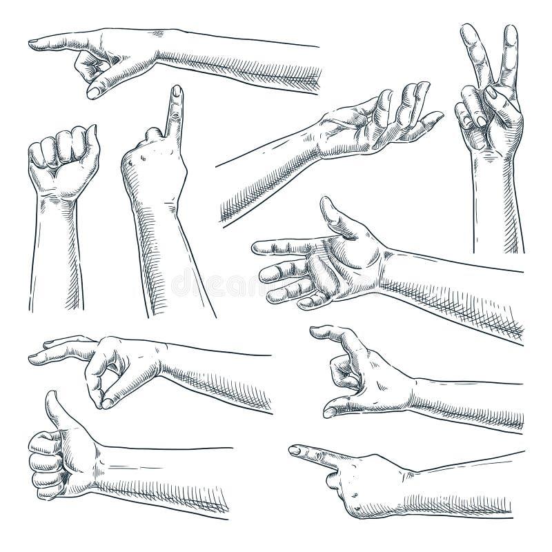 Gesto di mano umano Illustrazione disegnata a mano di schizzo di vettore Raccolta maschio o femminile delle mani, isolata su fond illustrazione vettoriale