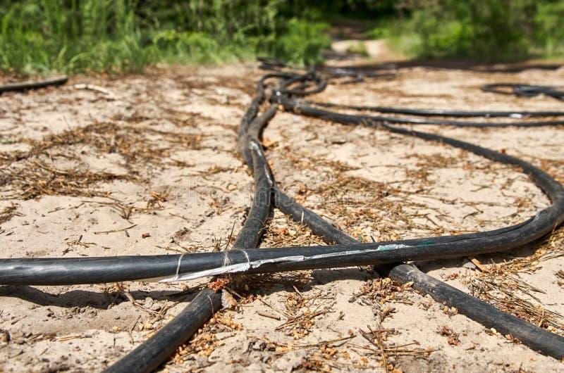 Gestolen kabel op grond in een bos Gestript van metaaldraden Beschermend omhulsel royalty-vrije stock foto